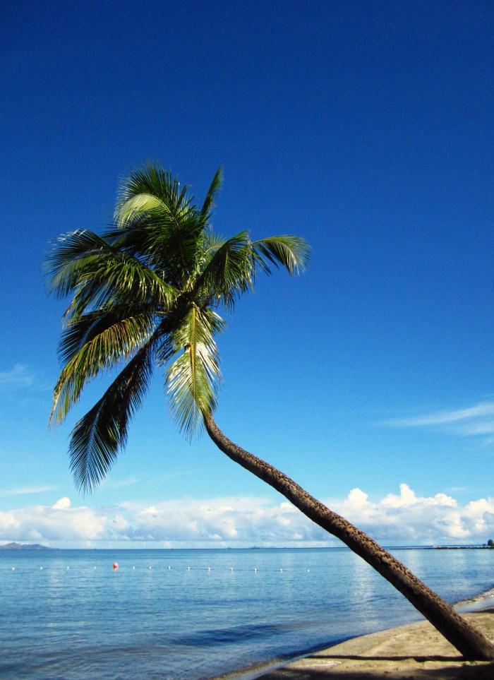 Nadi Bay, Fiji