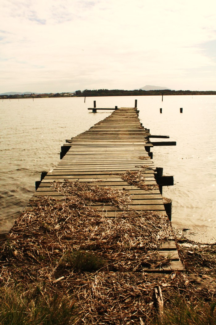 Jetty at Manning Point