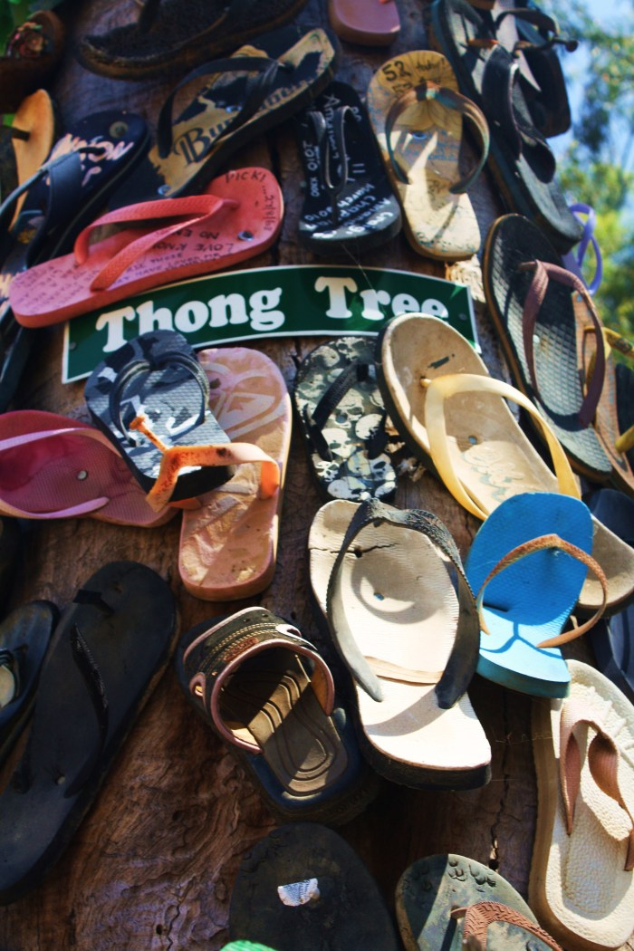Thong Tree