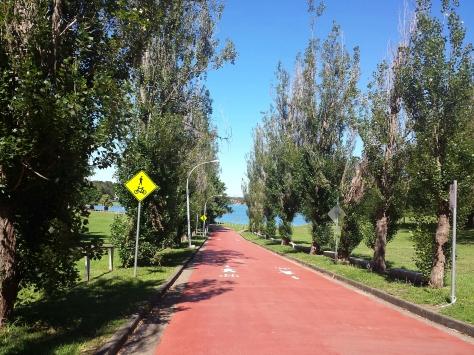 Bayrun Track