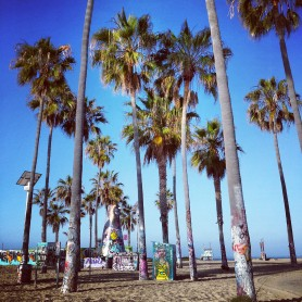 Graffiti on the Palm Trees