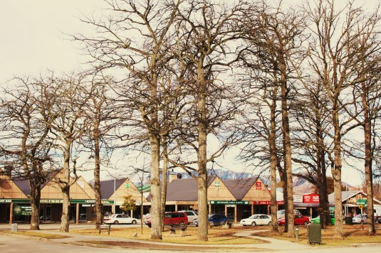 Hamner Springs