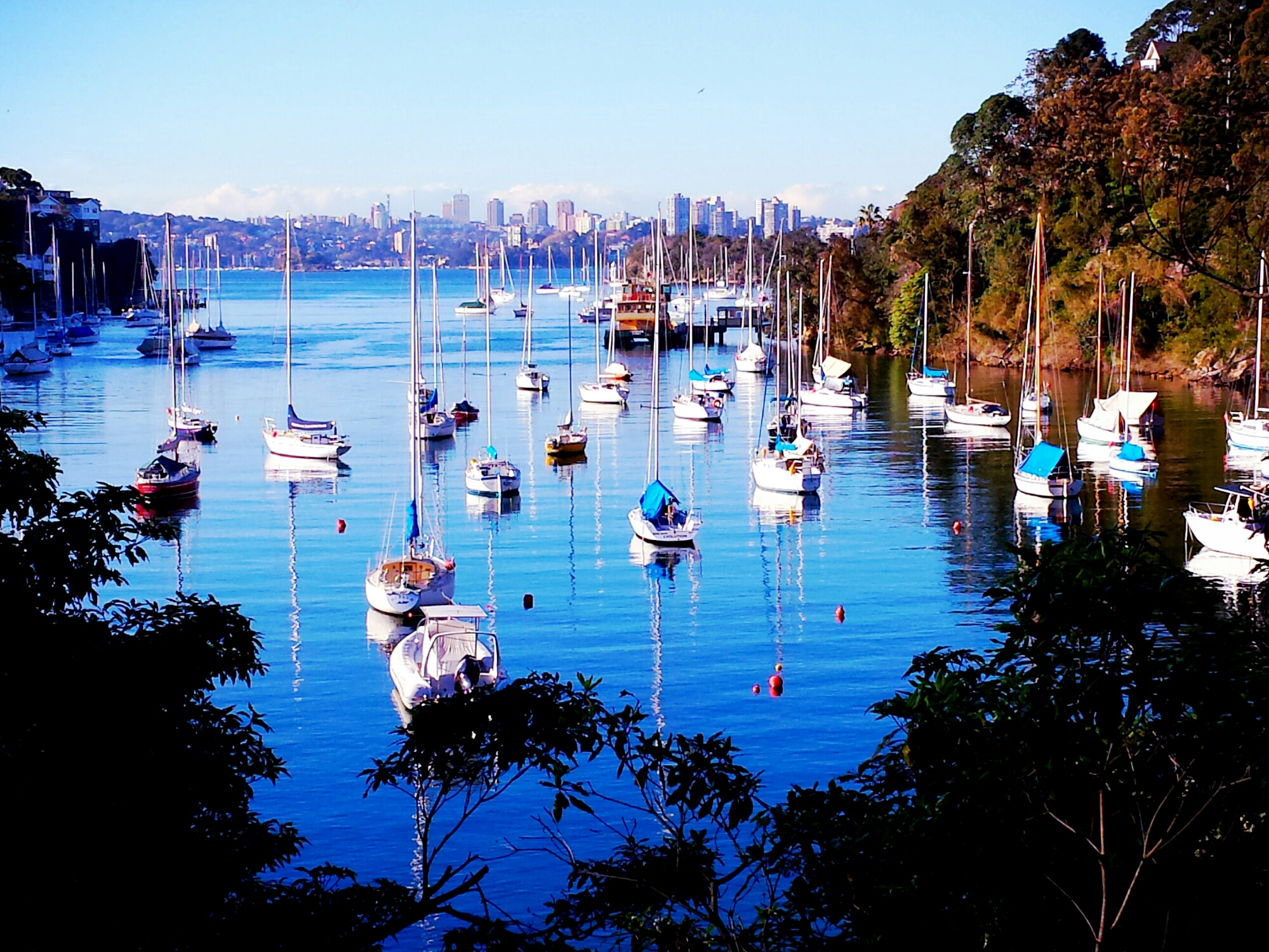 Serenity at Cremorne Point