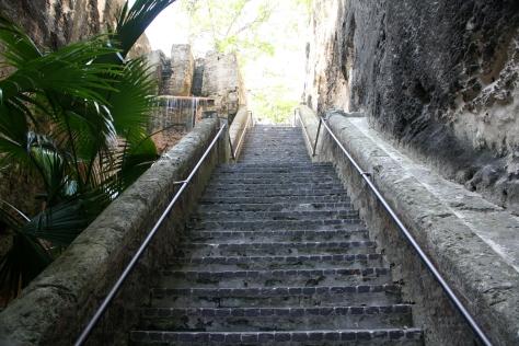 Queen's Steps