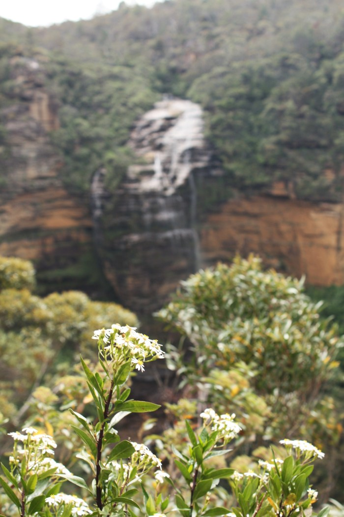 Wentworth Falls from Princess Rock Look Out